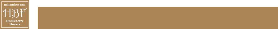 胡蝶蘭のレンタル・販売 | ハックルベリーフラワーズ株式会社